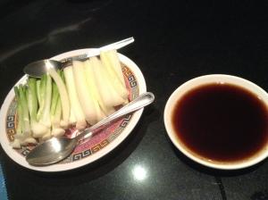 Hoisin Sauce & Spring Onions & Cucumber