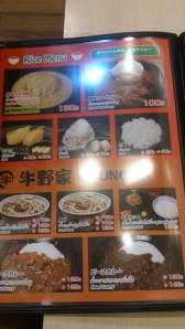 Yummy looking rice ball!
